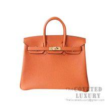 Hermes Birkin 25 Handbag Ck93 Orange Togo GHW