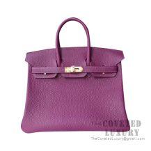 Hermes Birkin 25 Handbag P9 Anemone Togo GHW