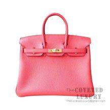 Hermes Birkin 25 Handbag T5 Rose Jaipur Togo GHW