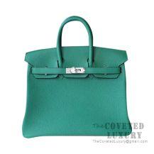 Hermes Birkin 25 Handbag U4 Vert Vertigo Togo SHW