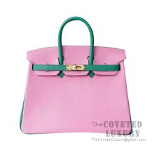 Hermes Birkin 25 Handbag 5P Pink And U4 Vert Vertigo Chevere GHW