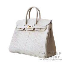 Hermes Birkin 25 Handbag Y1 Vanille Matte Alligator GHW