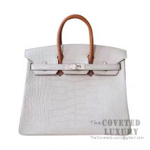 Hermes Birkin 25 Handbag Y1 Vanille And Barenia Matte Alligator SHW