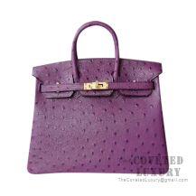 Hermes Birkin 25 Handbag 5L Ultraviolet Ostrich GHW