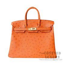 Hermes Birkin 25 Handbag CK93 Orange Ostrich GHW