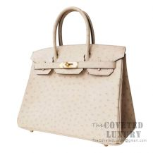 Hermes Birkin 30 Handbag 3C Parchemin Ostrich GHW