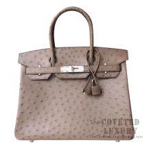 Hermes Birkin 30 Handbag CK19 Mousse Ostrich SHW