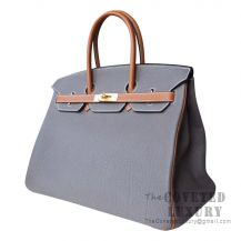 Hermes Birkin 40 Bag 8F Etain And CC37 Gold Togo GHW